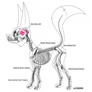 stereofox_skeleton